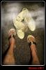 Stinky Feet_1